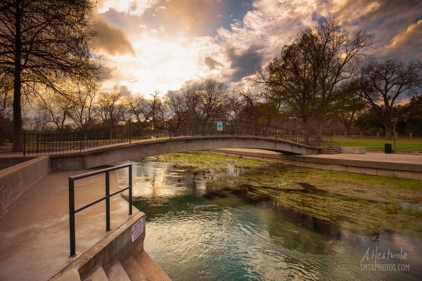 Afternoon Reverie at Sewell Park in San Marcos, TX