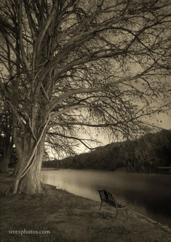Night at Spring Lake in San Marcos, TX