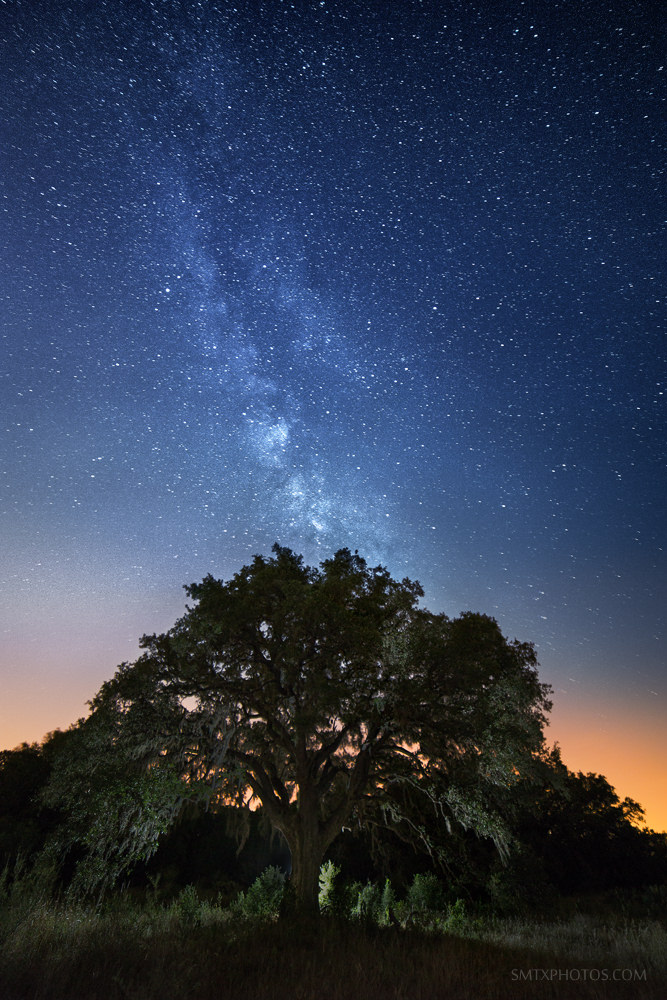 The Milky Way rises over the Purgatory trails in San Marcos, TX.