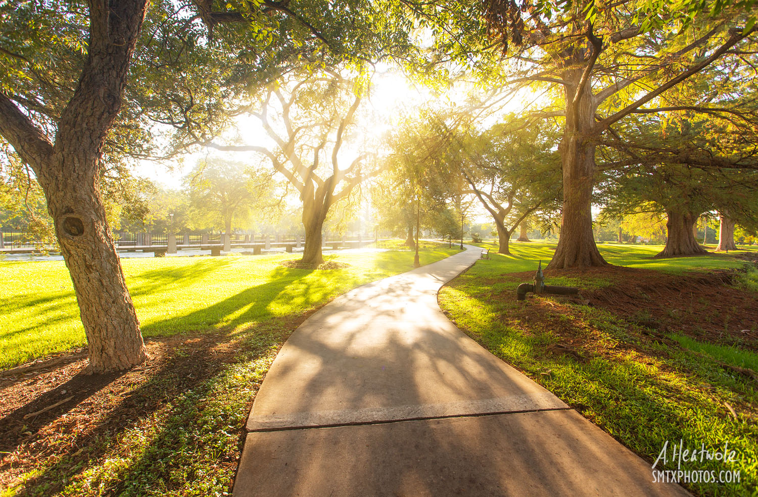 A Morning Stroll Through the Texas State University Campus