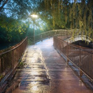 Sewell Park in the Warm Summer Rain.