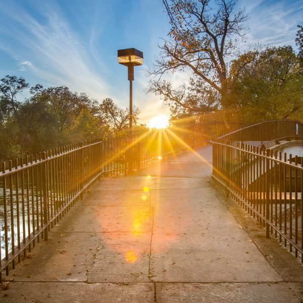 Sunrays at Sewell Park