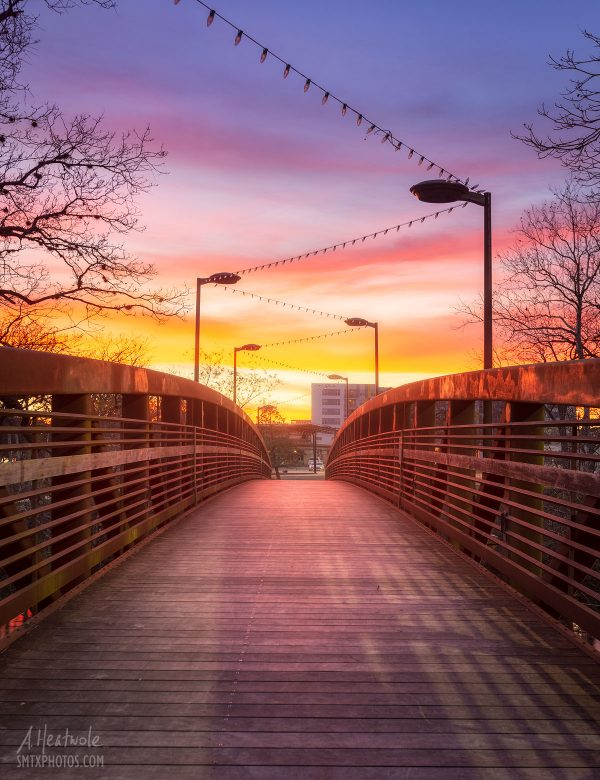 Sunset in City Park
