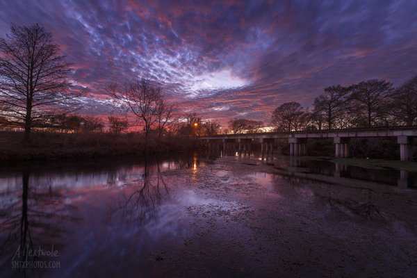 A beautiful winter sunset on the San Marcos River.